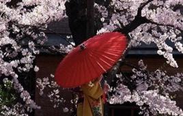 chemise pour femme inspiration japonaise